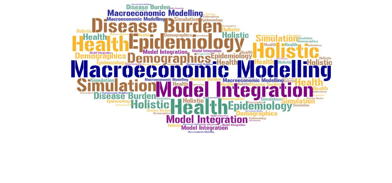 Macro-economic modelling of health and health policy