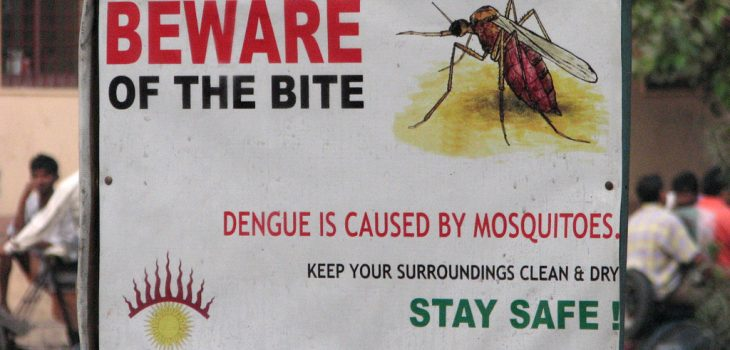 dengue warning sign