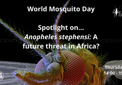World Mosquito Day 2020 webinar event graphic