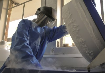 Geoffrey Odoch, a Lab Technician at the MRC/UVRI & LSHTM Uganda Research Unit removes frozen samples from storage in liquid nitrogen in the Unit's biohazard level 3 laboratories. Credit: Magdalena Bondos