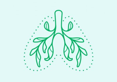 graphic of green lungs with leaves for bronchioles