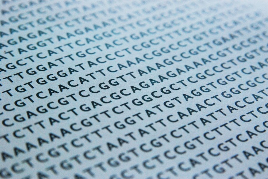 DNA Sequence. Credit: Freeimages