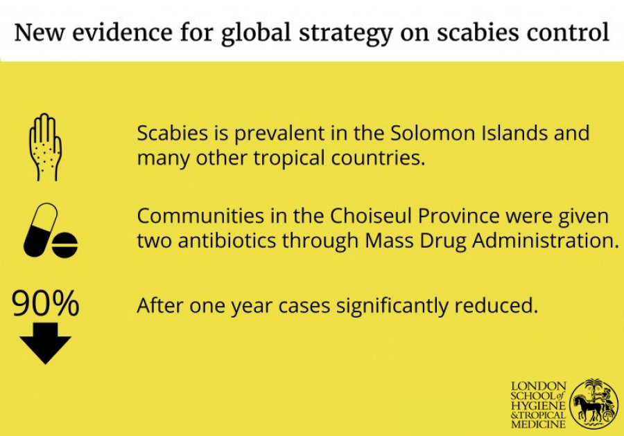 Scabies infographic. Credit: LSHTM