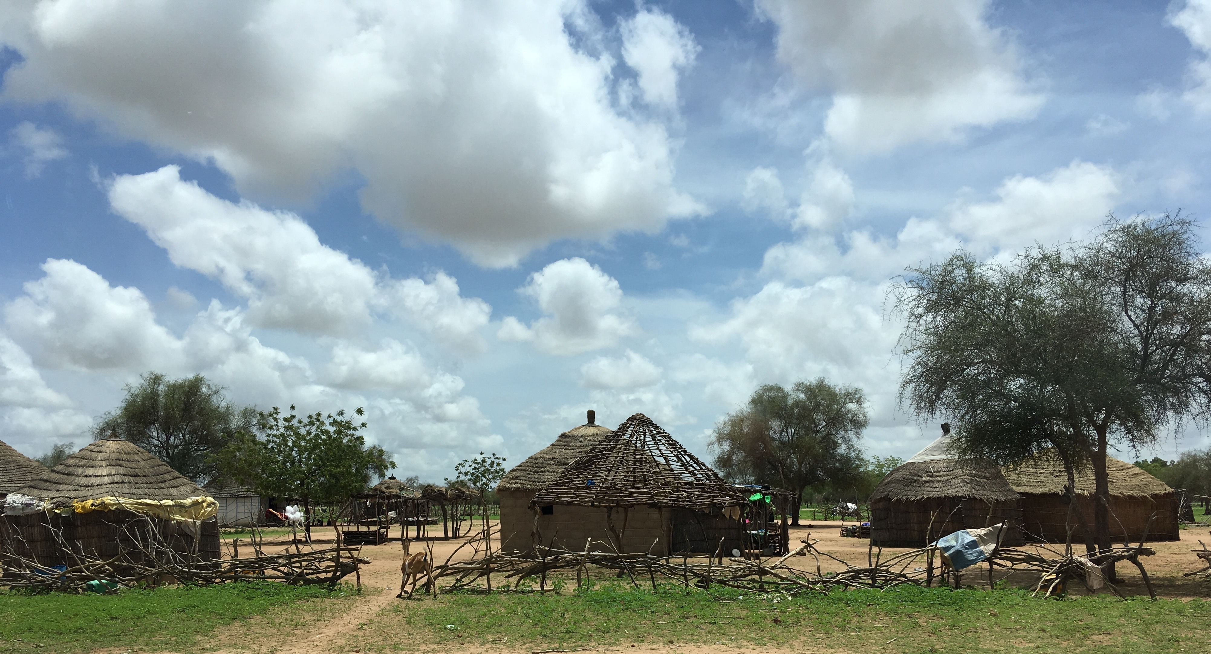 Traditional village in the Sahel, Northern Senegal