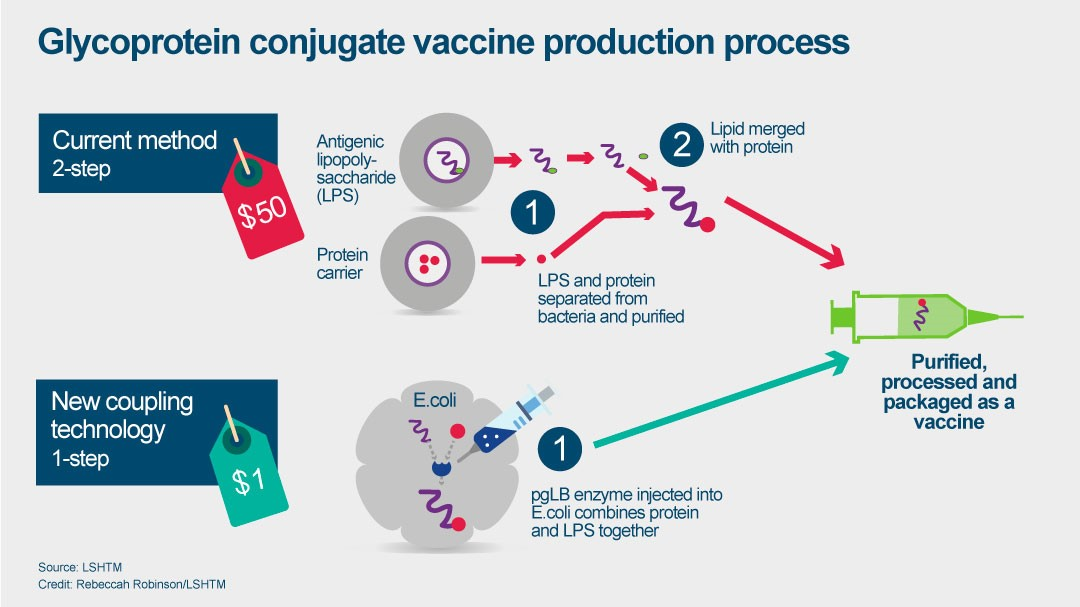 Vaccine production process